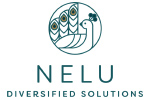 Nelu Diversified Consulting Solutions