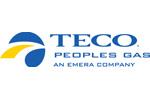 TECO PGS